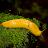 Sean Hart avatar image