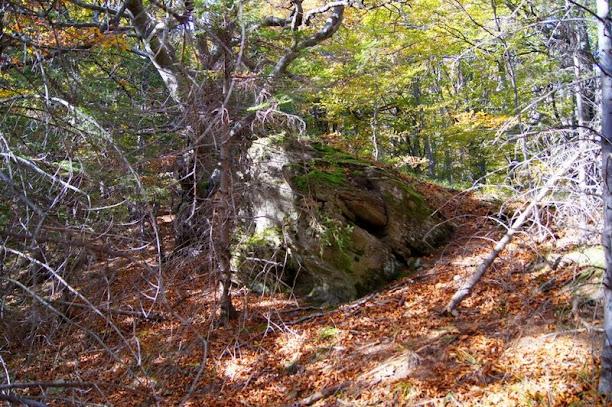 Dwernik Kamień, Bieszczady
