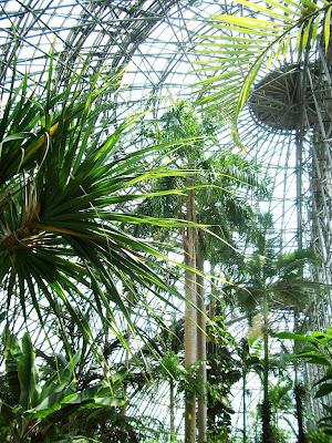 夢の島熱帯植物館, 2-1-2 Yumenoshima, Koto, Tokyo 136-0081, Japan