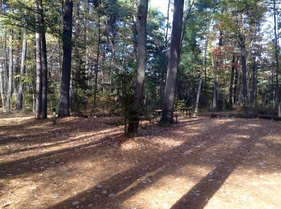 Fall camping at Bonnechere Provincial Park