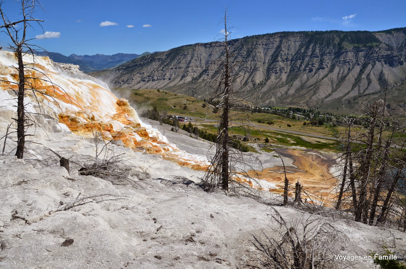 yellowstone mammoth springs