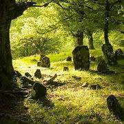 К чему снится копать могилу?