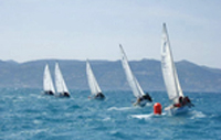 J/24 one-design sailboats- sailing Pasquavela Italy