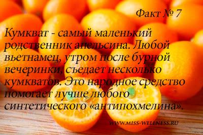 interesnie-fakti-apelsin 7