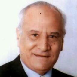 Mahmoud Osman Photo 33