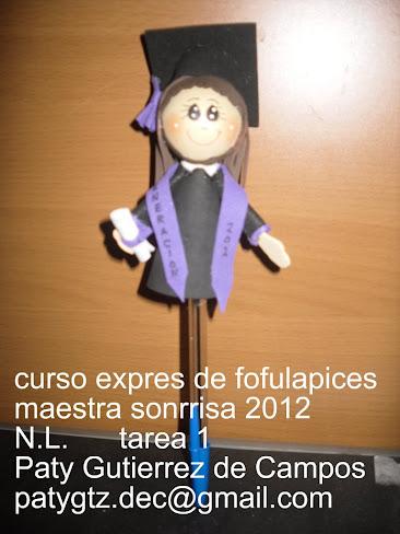 GALERIA DE CURSO EXPRES DE FOFULAPICES Photo