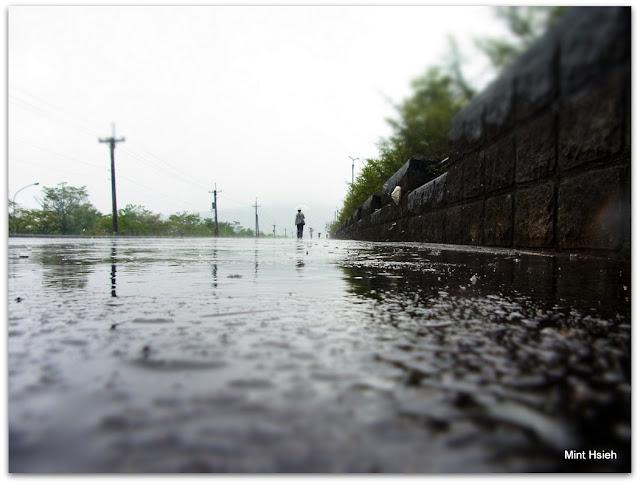 雨天還是不要外出啊