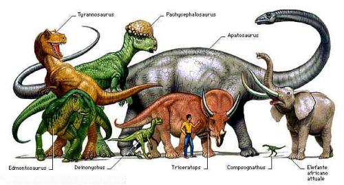 classificazione dei dinosauri