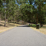 Gently downhill trail and garage bin in Richley Reserve (401707)