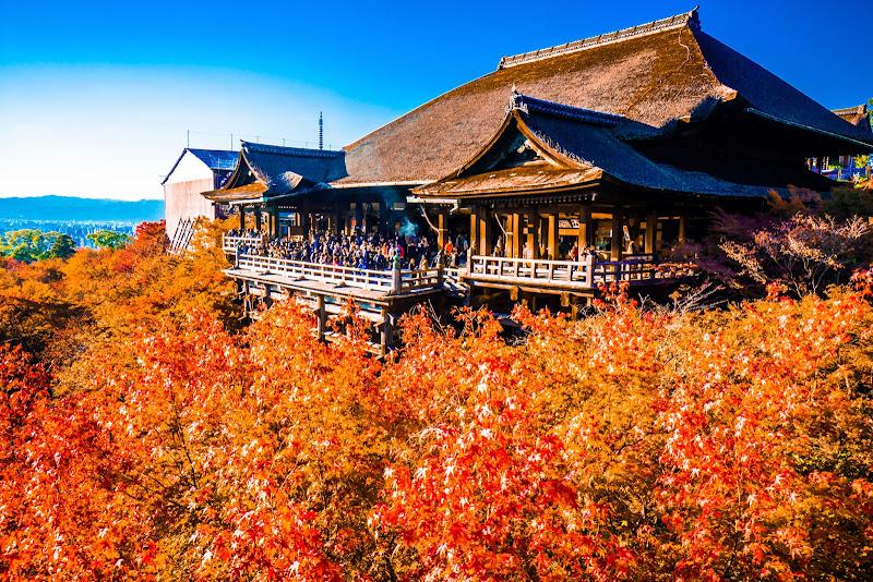 京都 紅葉 清水寺 写真6