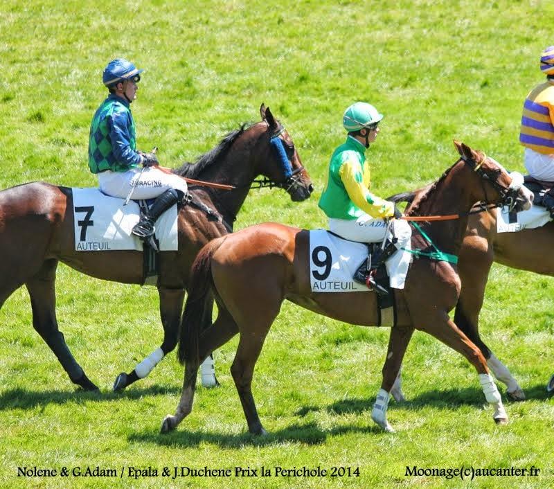 Photos Auteuil le 21-06-2014 IMG_2182