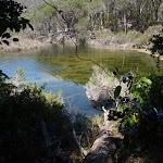 Sandy Beach Creek (105766)
