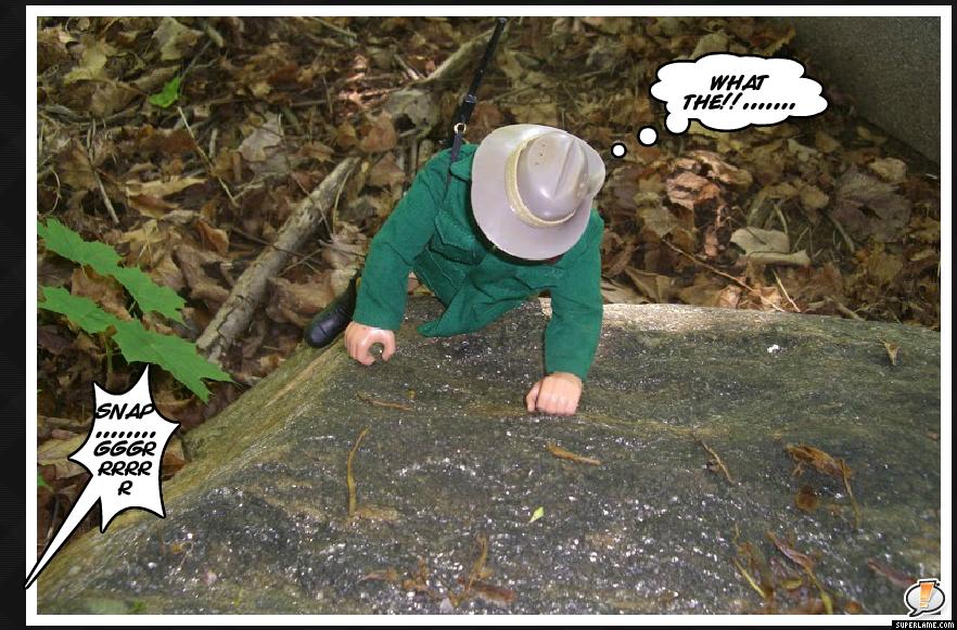 Black Forest Bear MySuperLamePic_00a6c786cdf92a5661b6729c2a90e0b9