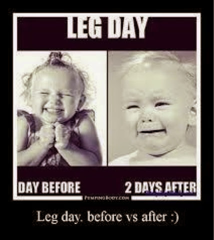 gym quotes, quote, gym, legday, legday quotes,