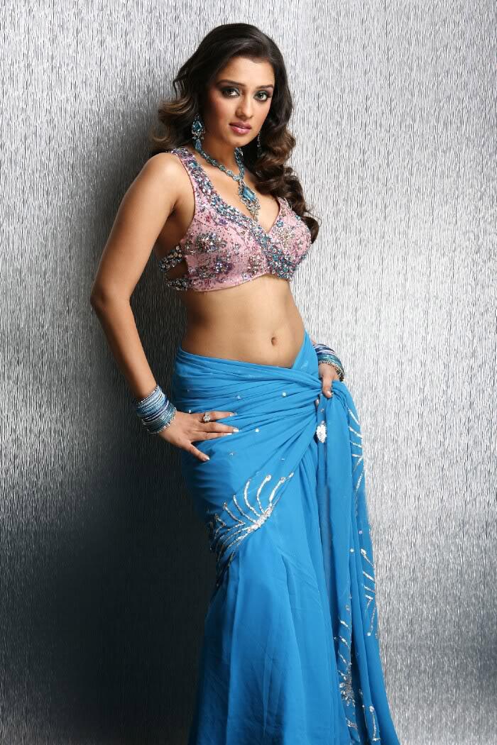 photosandimages tamil actress nikitha spicy photos in saree