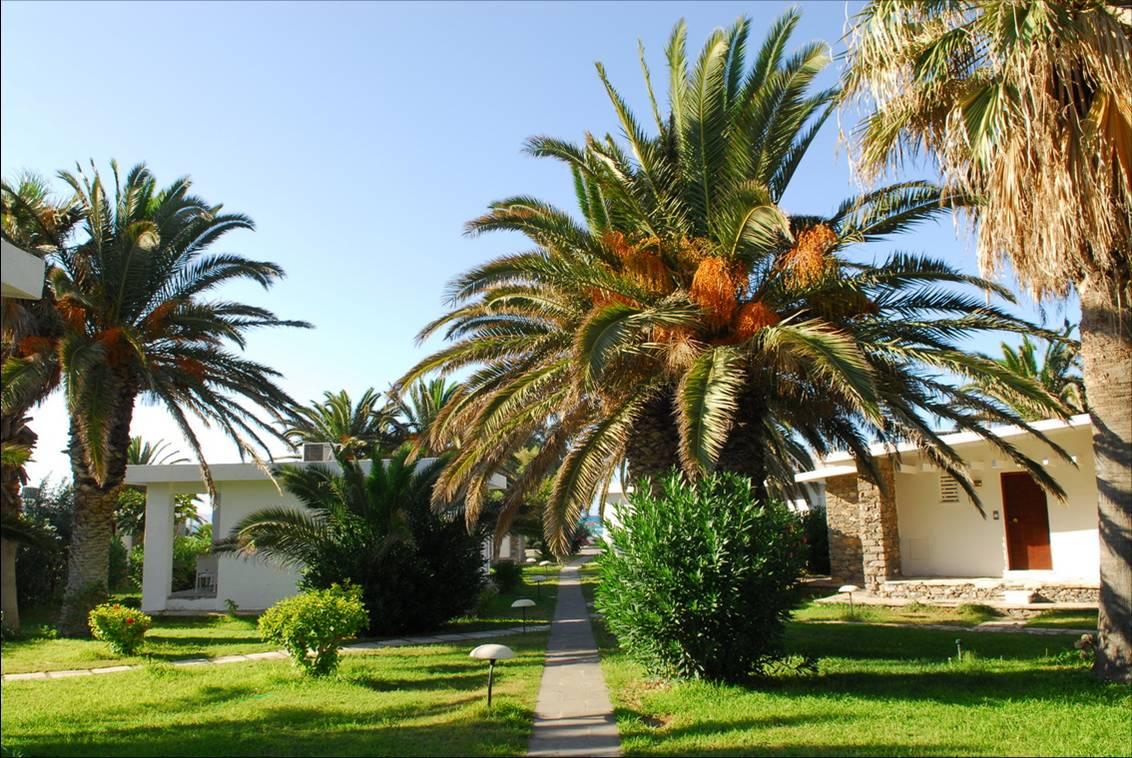 Creta Beach garden view.jpg