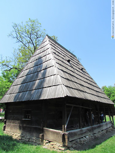 Surdesti household, Maramures County
