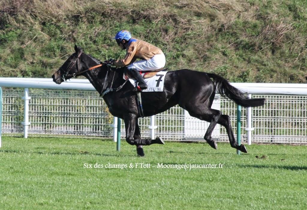 Photos Auteuil 18-10-2014 IMG_4914