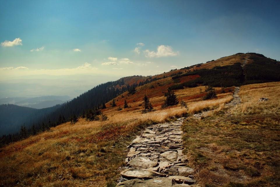 Szlak na Małą Babią Górę (Cyl)
