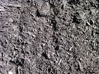 Dartmouth Compost