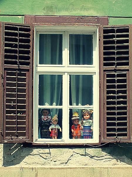 ferestre sibiu