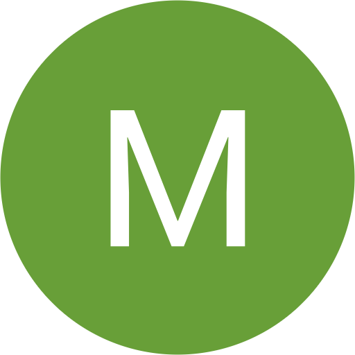 Meneses Michel