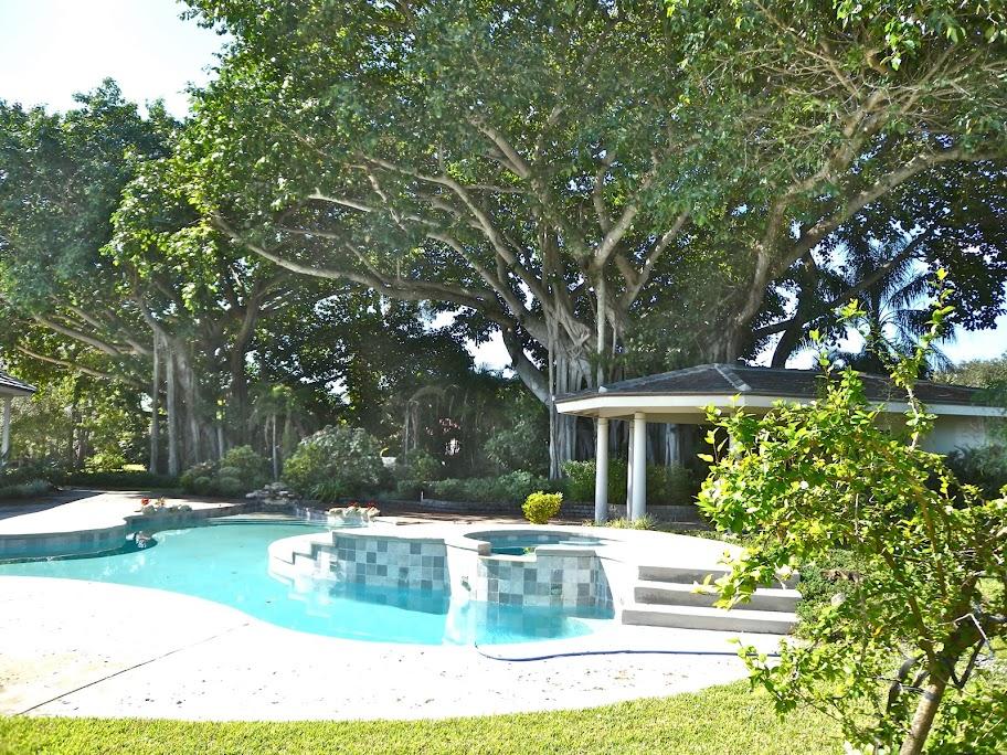 3953 Lone Pine Estate home for sale