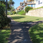 Houses beside Cremorne Reserve (259010)
