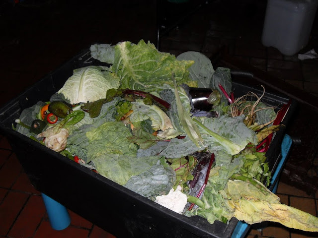 recycle vegetable waste