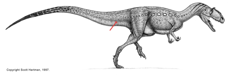 Era de los dinosaurios yahoo dating
