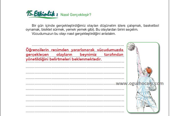 sayfa+24+-15.etkinlik.png (694×474)