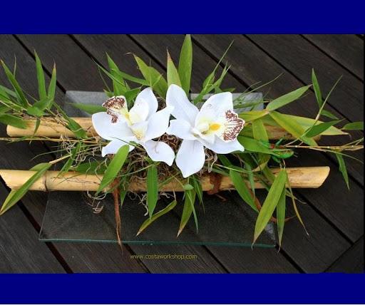 Bamboe w.jpg