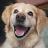 Kenny Dennett avatar image