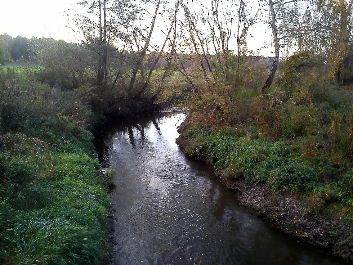 rzeka Ner