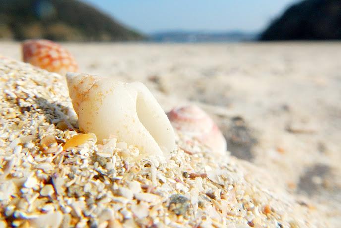 辰ノ島海水浴場の砂