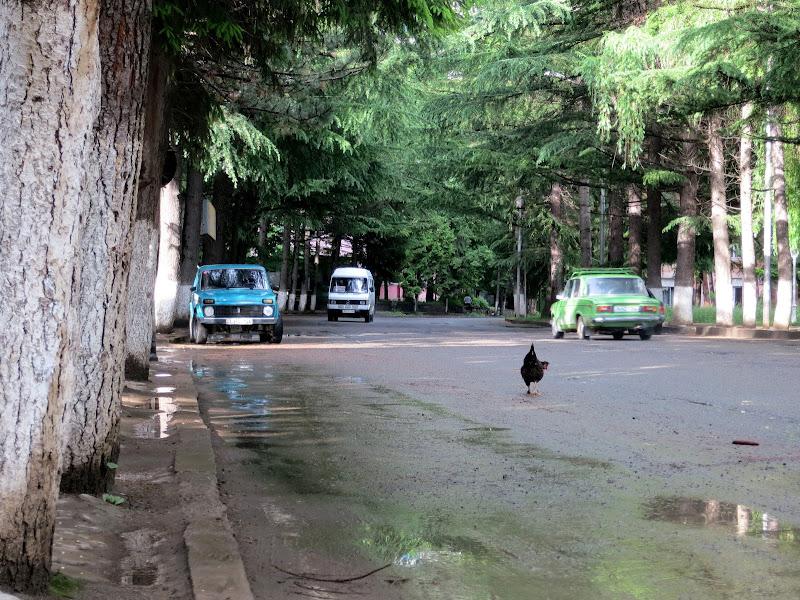Borjomi street