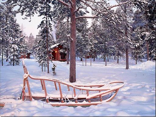 Winter scene 48.jpg
