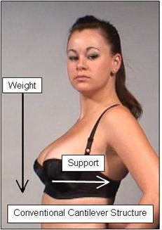 Pretty Bras for Big Breasts: A Little Background on What ...