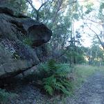 Nice rock outcrops along the Blackwattle trail (153127)