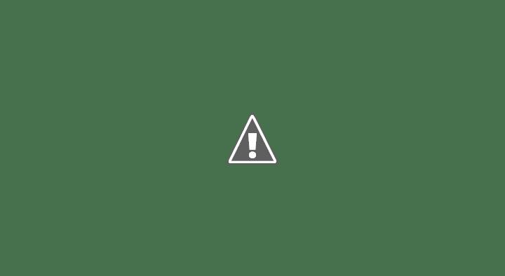 Mesa Local de Prevención y Asistencia a la Violencia de Género. La Presidenta del Colegio de Asistentes Sociales, Jimena Lope