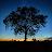 Matt Ots avatar image