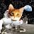 Vivi Friliandita avatar image