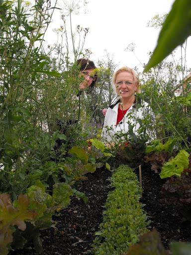 Elmélyedve a kertészetben