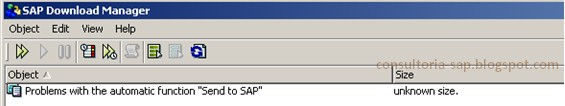 SAP Download Manager