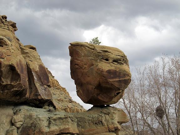 Pig Head Rock
