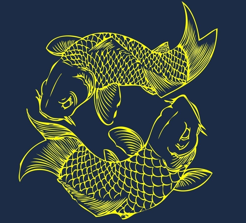 Black Wallpaper - Koi Fish Picture Wallpaper