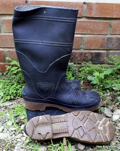 ¿que botas usamos? S5037174