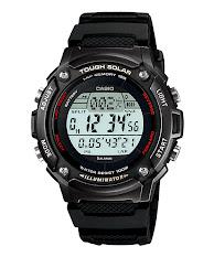 Casio Standard : LTP-1326-4A2V