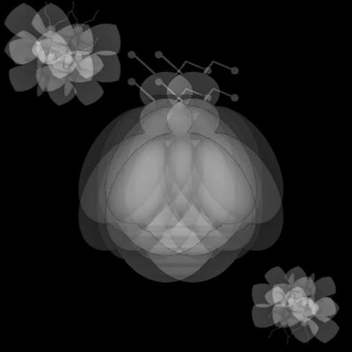 5me7ad (3).jpg