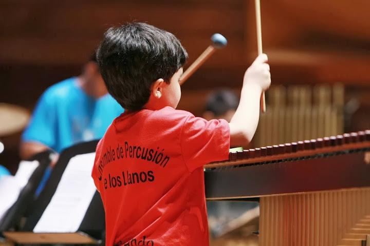 El ensamble nació en el 2004 en el seno de la Cátedra de Percusión de la Orquesta Juvenil e Infantil de Guanare